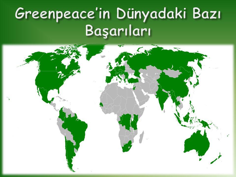 Greenpeace'in Dünyadaki Bazı Başarıları
