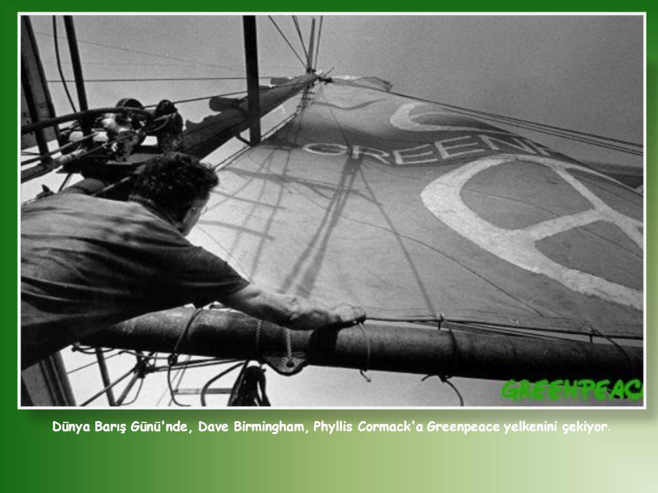 Dünya Barış Günü nde, Dave Birmingham, Phyllis Cormack a Greenpeace yelkenini çekiyor.