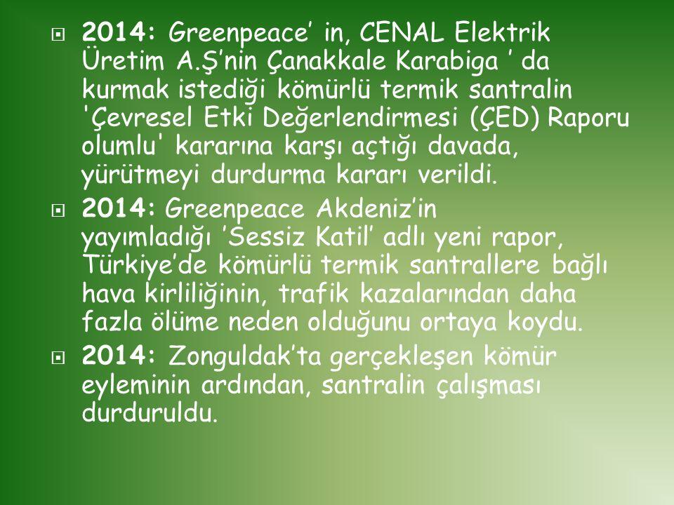 2014: Greenpeace' in, CENAL Elektrik Üretim A