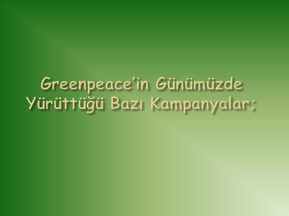 Greenpeace'in Günümüzde Yürüttüğü Bazı Kampanyalar;