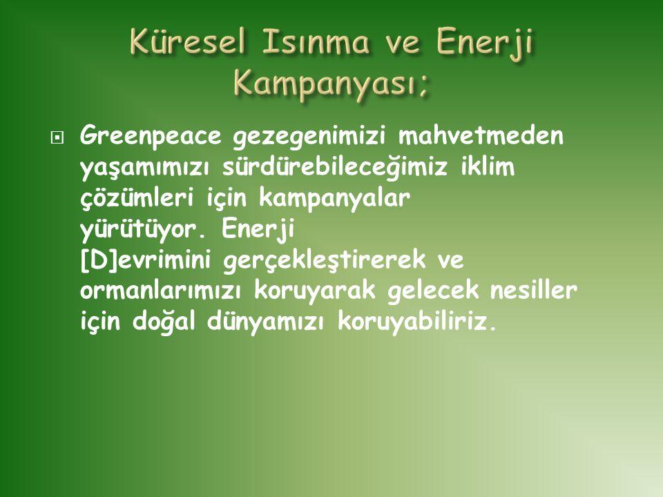 Küresel Isınma ve Enerji Kampanyası;