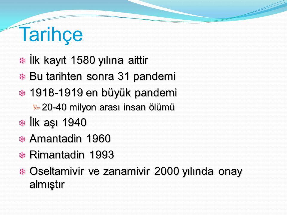 Tarihçe İlk kayıt 1580 yılına aittir Bu tarihten sonra 31 pandemi