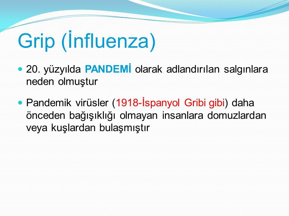 Grip (İnfluenza) 20. yüzyılda PANDEMİ olarak adlandırılan salgınlara neden olmuştur.
