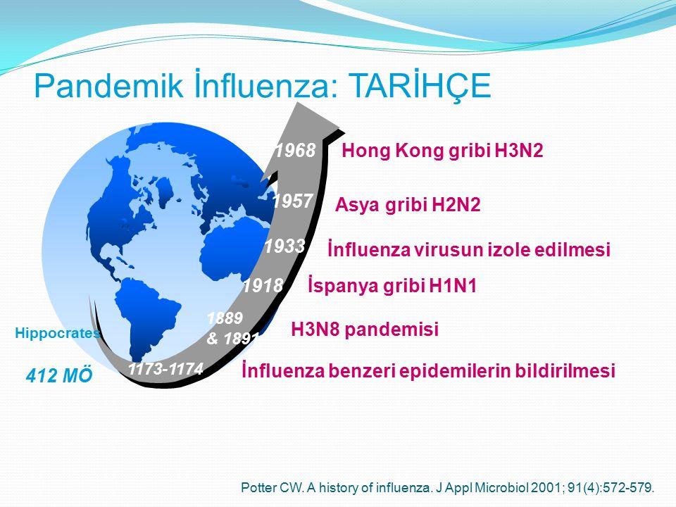 Pandemik İnfluenza: TARİHÇE