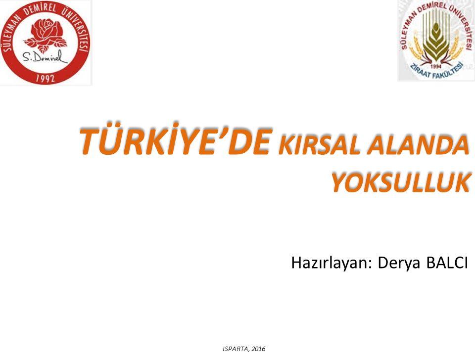 TÜRKİYE'DE KIRSAL ALANDA YOKSULLUK