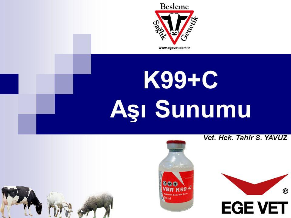K99+C Aşı Sunumu Vet. Hek. Tahir S. YAVUZ