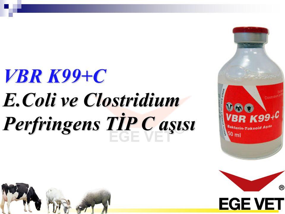 VBR K99+C E.Coli ve Clostridium Perfringens TİP C aşısı