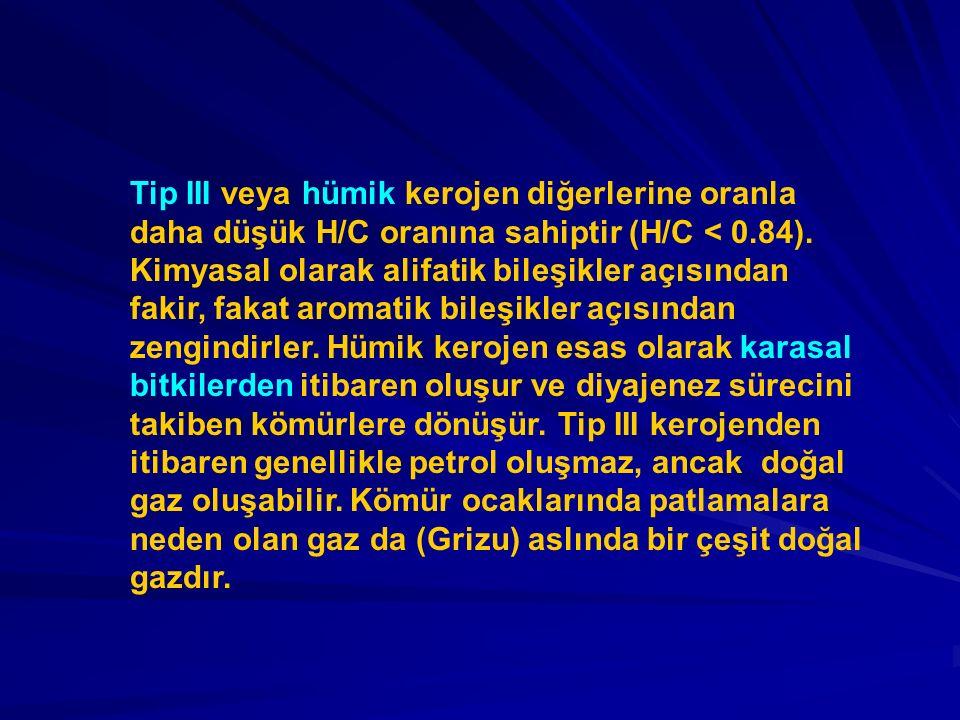 Tip III veya hümik kerojen diğerlerine oranla daha düşük H/C oranına sahiptir (H/C < 0.84).