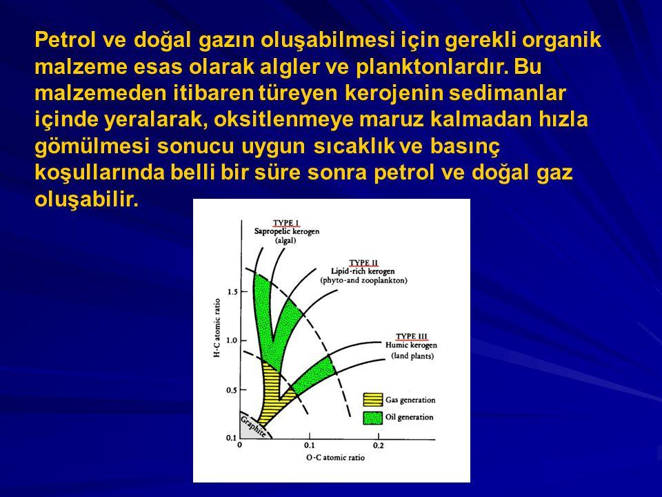 Petrol ve doğal gazın oluşabilmesi için gerekli organik malzeme esas olarak algler ve planktonlardır.