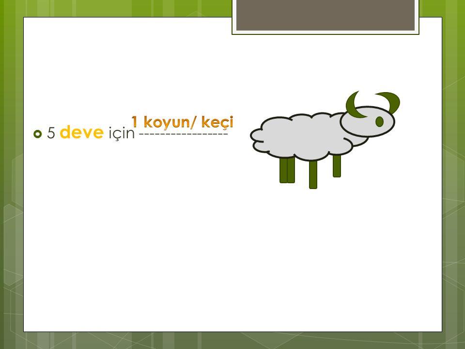 1 koyun/ keçi 5 deve için -----------------