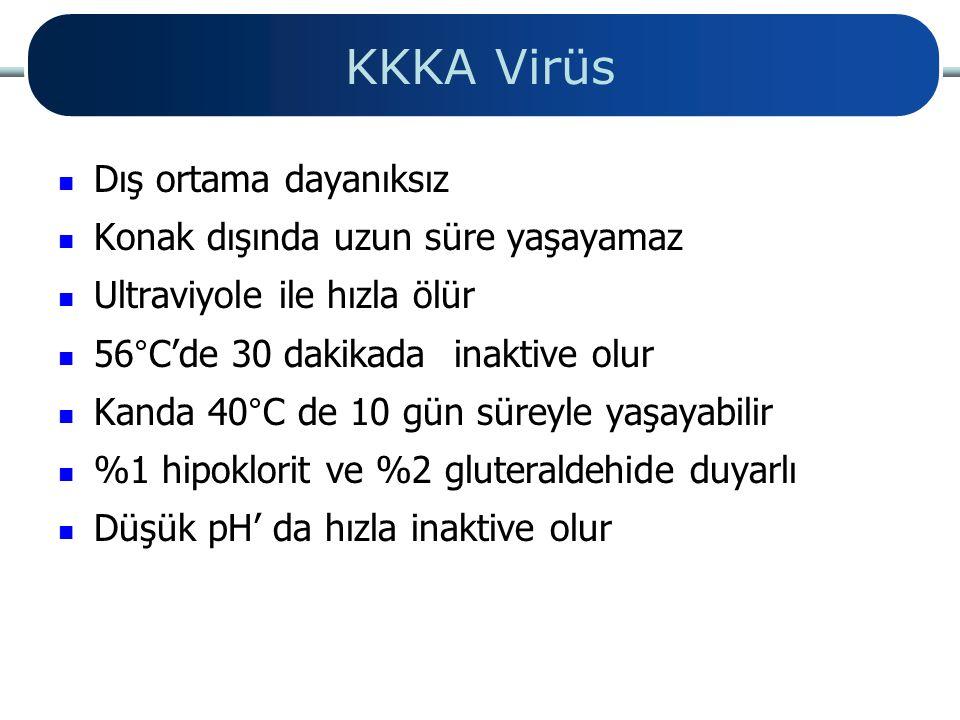 KKKA Virüs Dış ortama dayanıksız Konak dışında uzun süre yaşayamaz