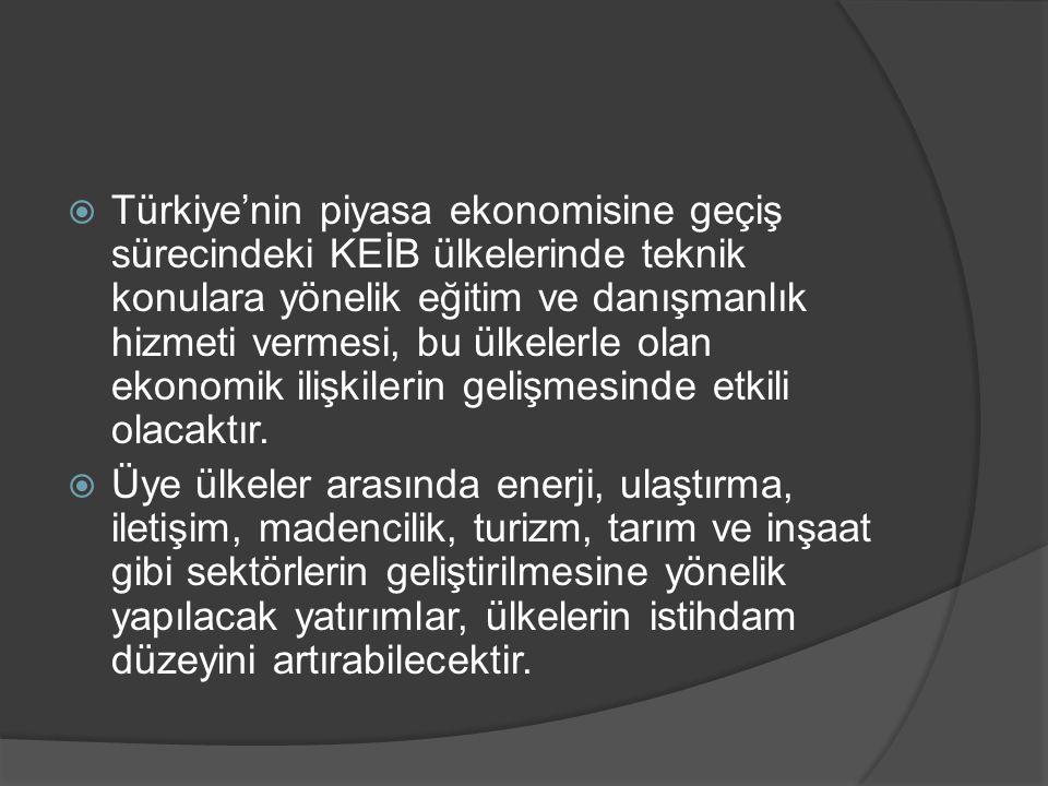 Türkiye'nin piyasa ekonomisine geçiş sürecindeki KEİB ülkelerinde teknik konulara yönelik eğitim ve danışmanlık hizmeti vermesi, bu ülkelerle olan ekonomik ilişkilerin gelişmesinde etkili olacaktır.