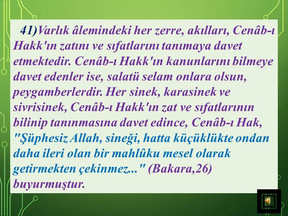 41)Varlık âlemindeki her zerre, akılları, Cenâb-ı Hakk ın zatını ve sıfatlarını tanımaya davet etmektedir.
