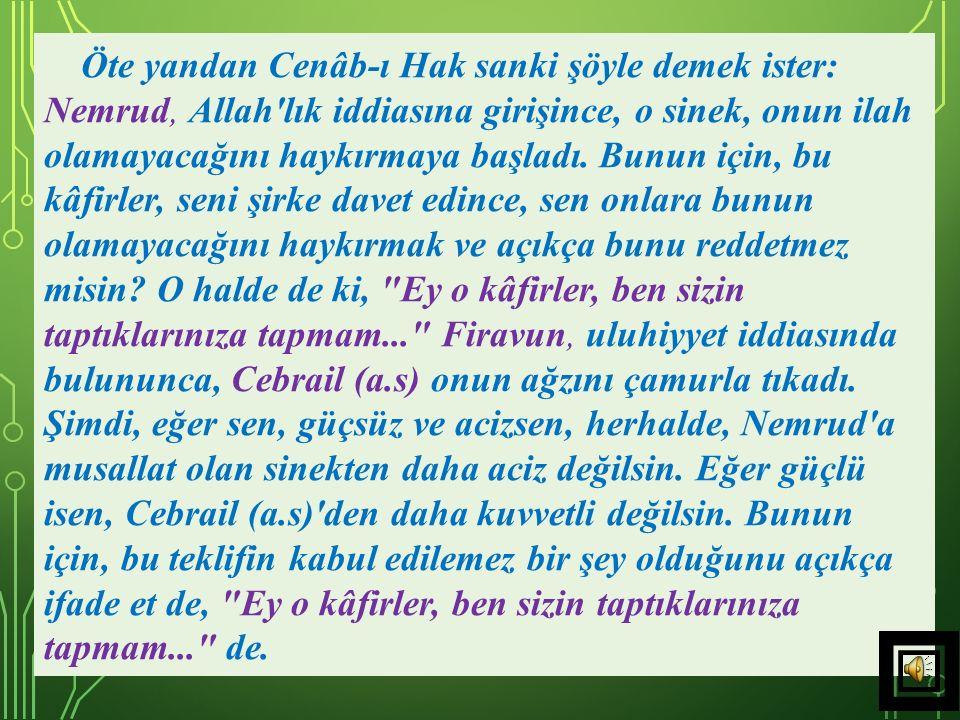 Öte yandan Cenâb-ı Hak sanki şöyle demek ister: Nemrud, Allah lık iddiasına girişince, o sinek, onun ilah olamayacağını haykırmaya başladı.