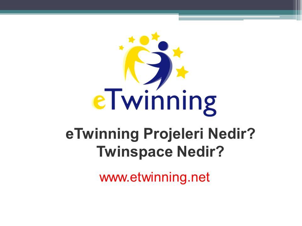 eTwinning Projeleri Nedir