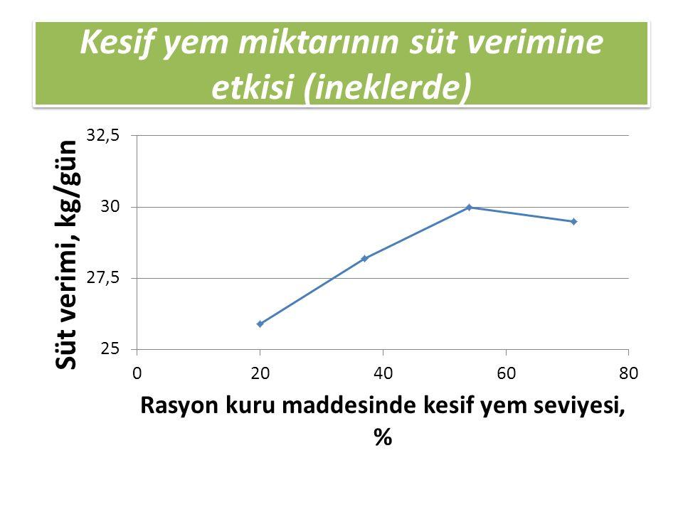 Kesif yem miktarının süt verimine etkisi (ineklerde)