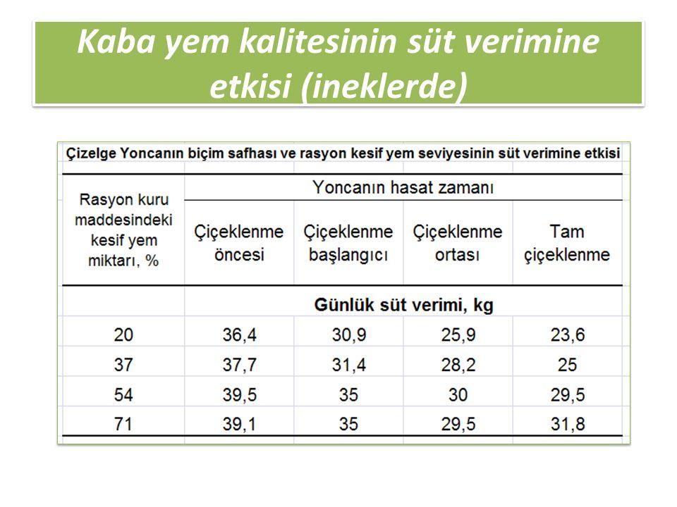 Kaba yem kalitesinin süt verimine etkisi (ineklerde)