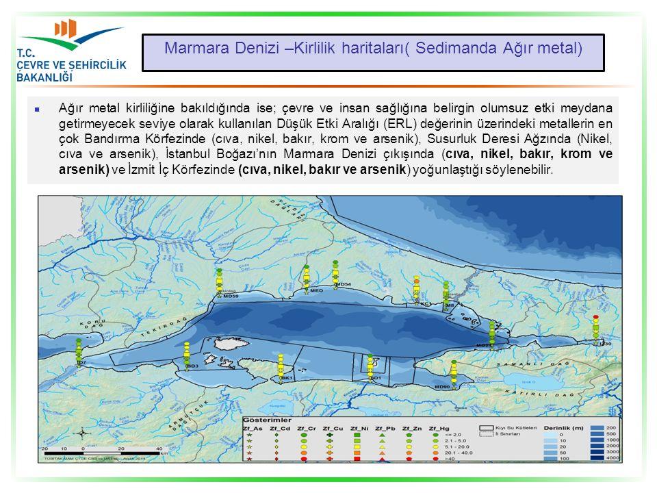 Marmara Denizi –Kirlilik haritaları( Sedimanda Ağır metal)