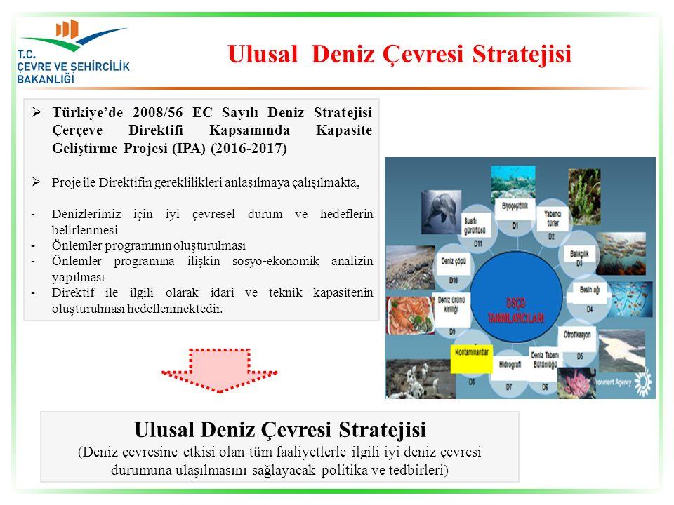 Ulusal Deniz Çevresi Stratejisi