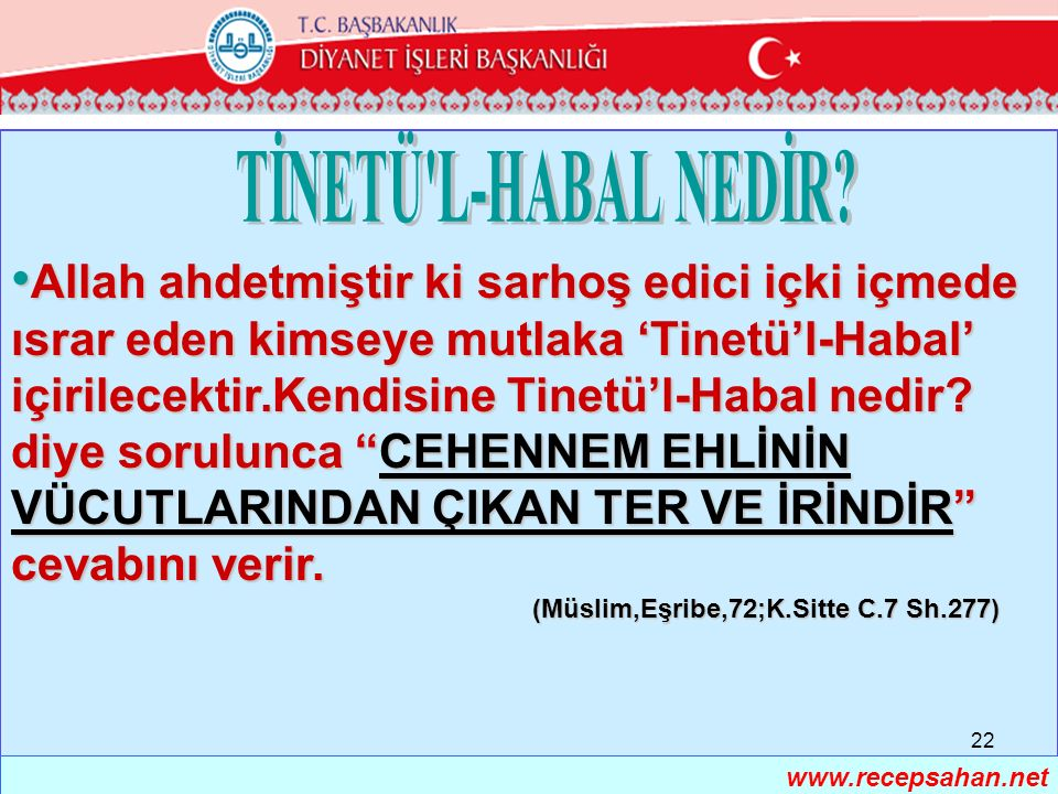 TİNETÜ L-HABAL NEDİR