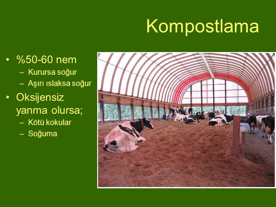 Kompostlama %50-60 nem Oksijensiz yanma olursa; Kurursa soğur