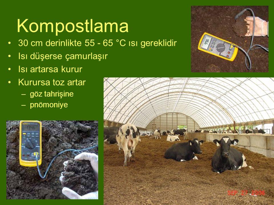 Kompostlama 30 cm derinlikte 55 - 65 °C ısı gereklidir