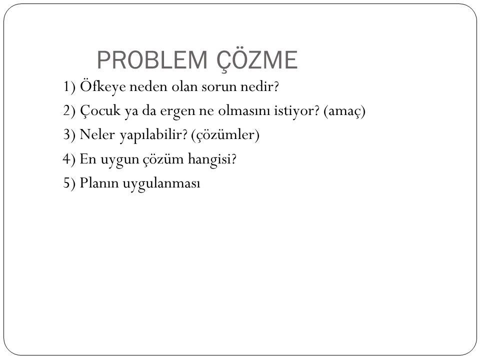 PROBLEM ÇÖZME 1) Öfkeye neden olan sorun nedir