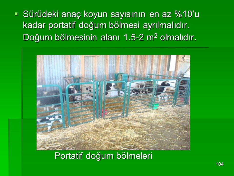 Sürüdeki anaç koyun sayısının en az %10'u kadar portatif doğum bölmesi ayrılmalıdır. Doğum bölmesinin alanı 1.5-2 m2 olmalıdır.