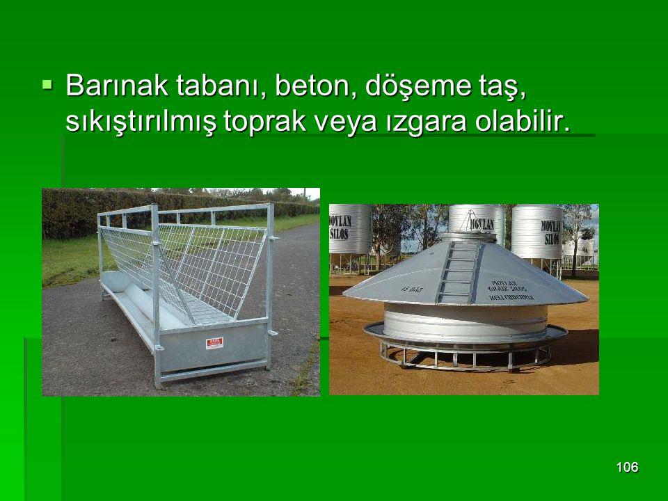 Barınak tabanı, beton, döşeme taş, sıkıştırılmış toprak veya ızgara olabilir.