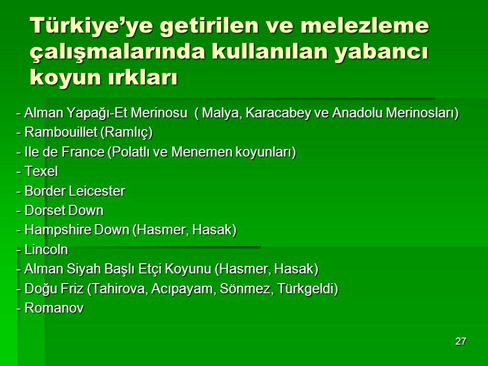 Türkiye'ye getirilen ve melezleme çalışmalarında kullanılan yabancı koyun ırkları