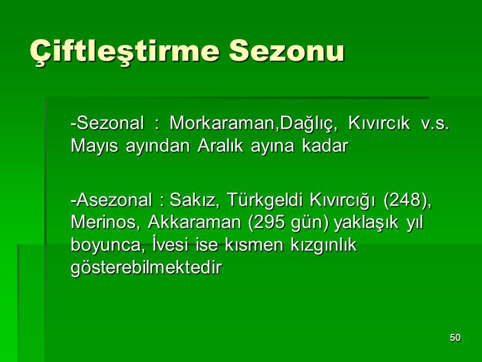 Çiftleştirme Sezonu -Sezonal : Morkaraman,Dağlıç, Kıvırcık v.s. Mayıs ayından Aralık ayına kadar.