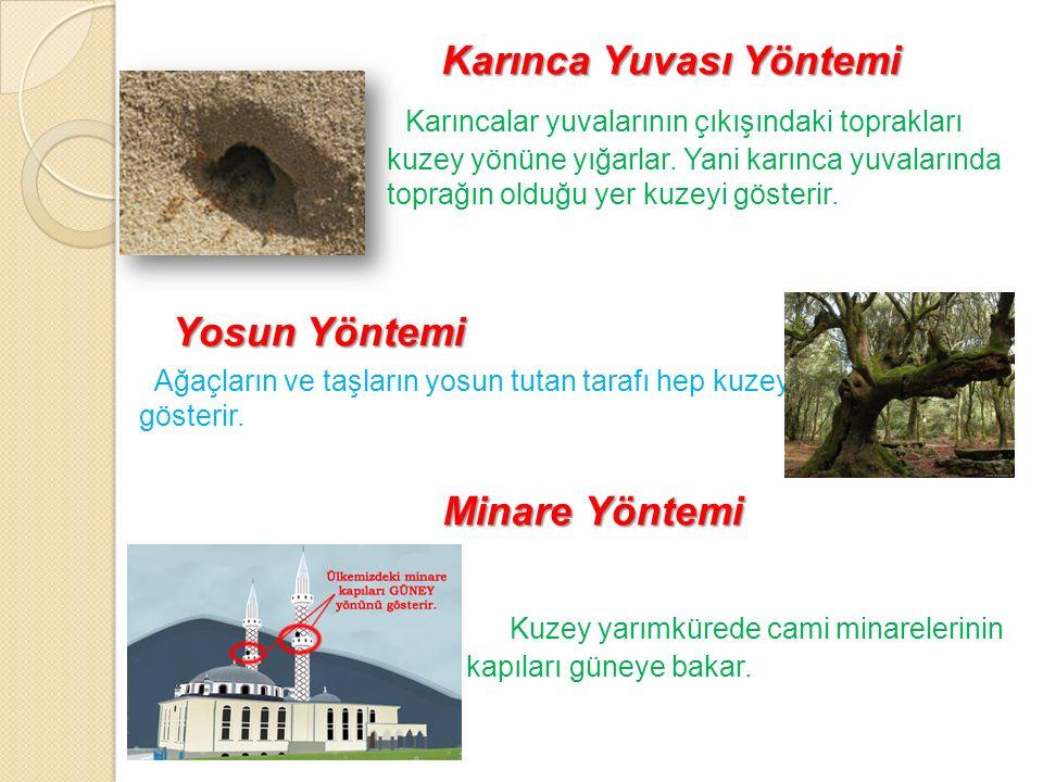 Karınca Yuvası Yöntemi
