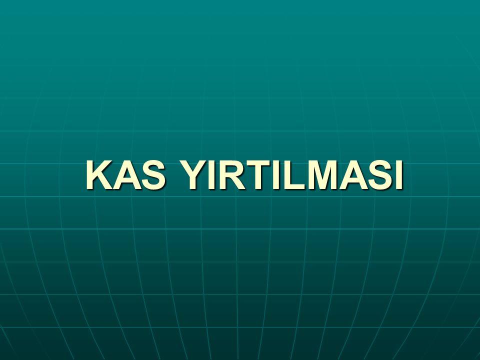 KAS YIRTILMASI