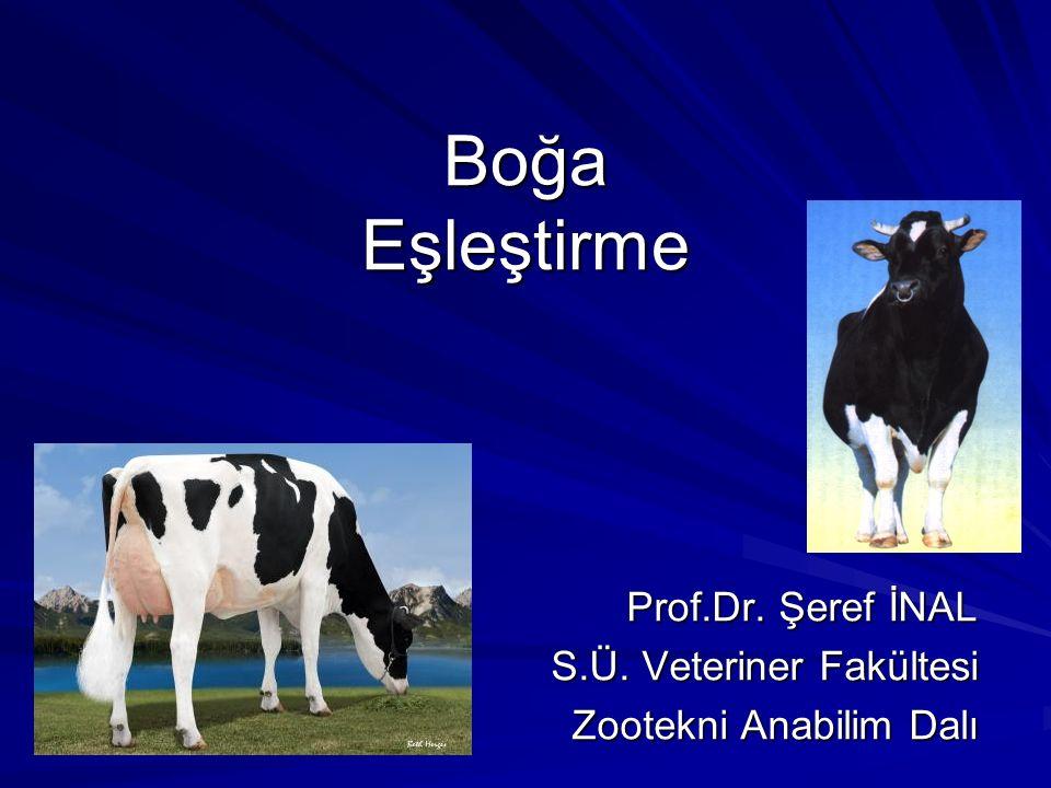 Prof.Dr. Şeref İNAL S.Ü. Veteriner Fakültesi Zootekni Anabilim Dalı