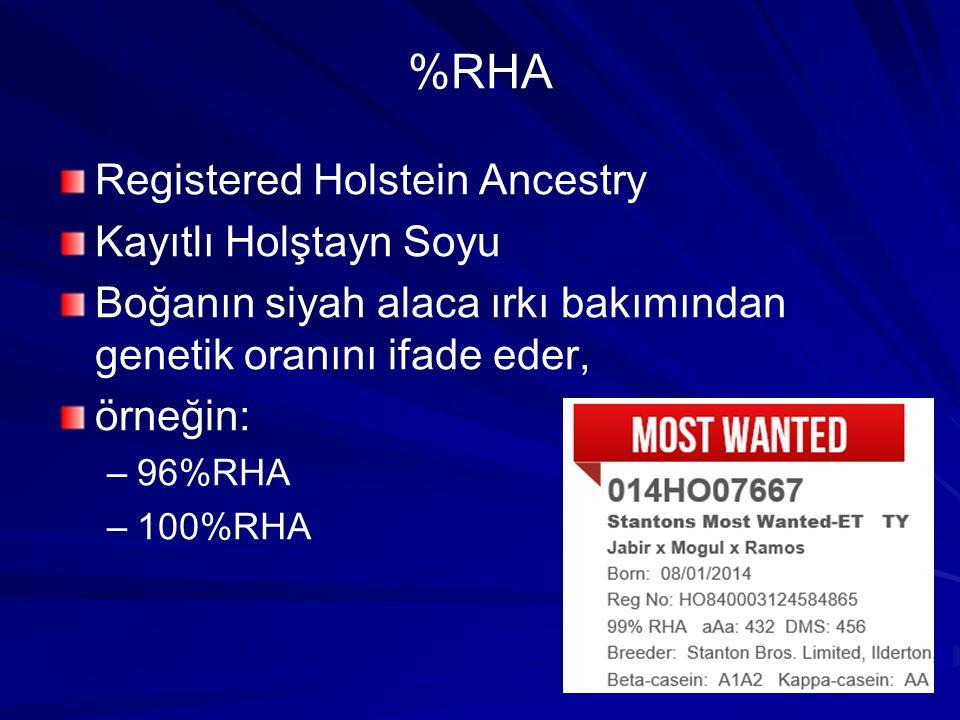 %RHA Registered Holstein Ancestry Kayıtlı Holştayn Soyu