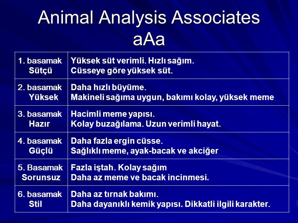 Animal Analysis Associates aAa