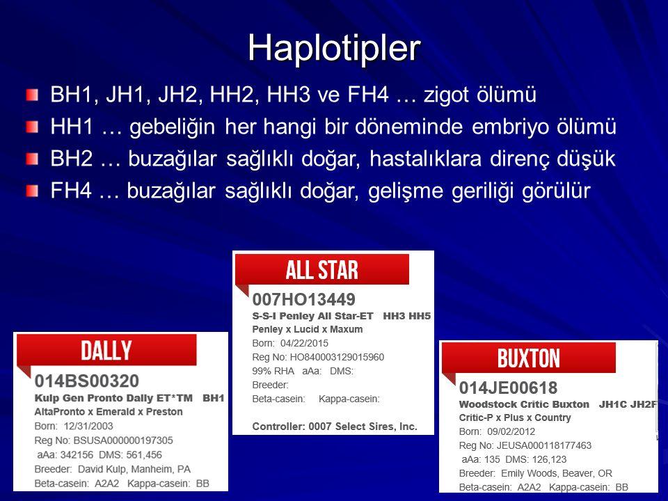 Haplotipler BH1, JH1, JH2, HH2, HH3 ve FH4 … zigot ölümü