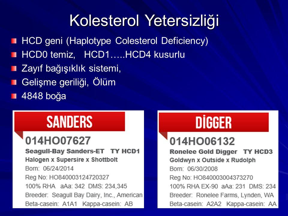 Kolesterol Yetersizliği