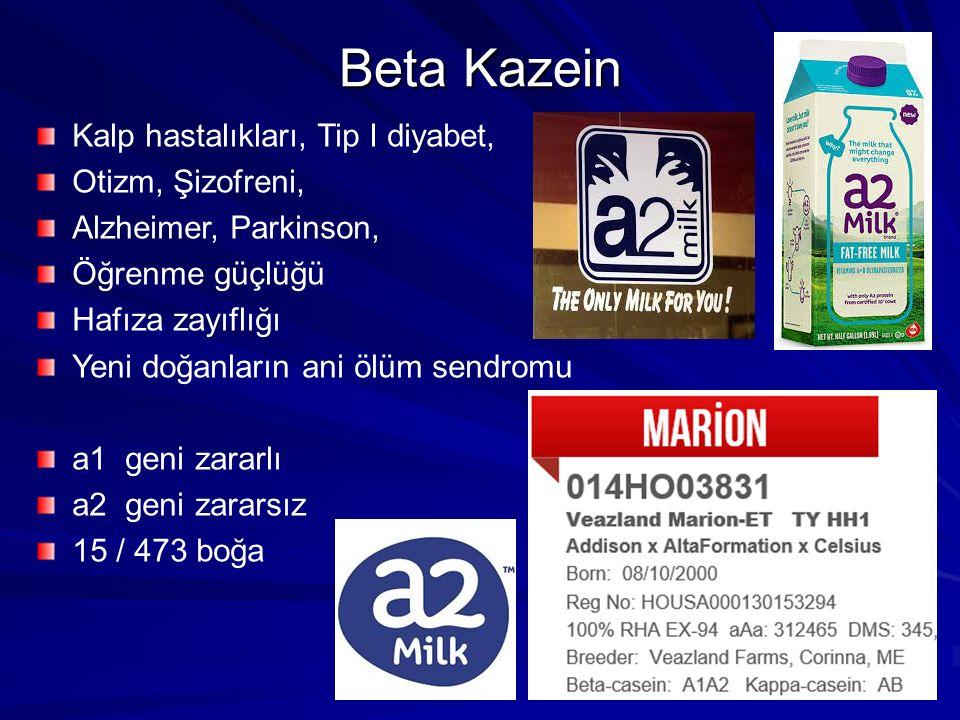 Beta Kazein Kalp hastalıkları, Tip I diyabet, Otizm, Şizofreni,