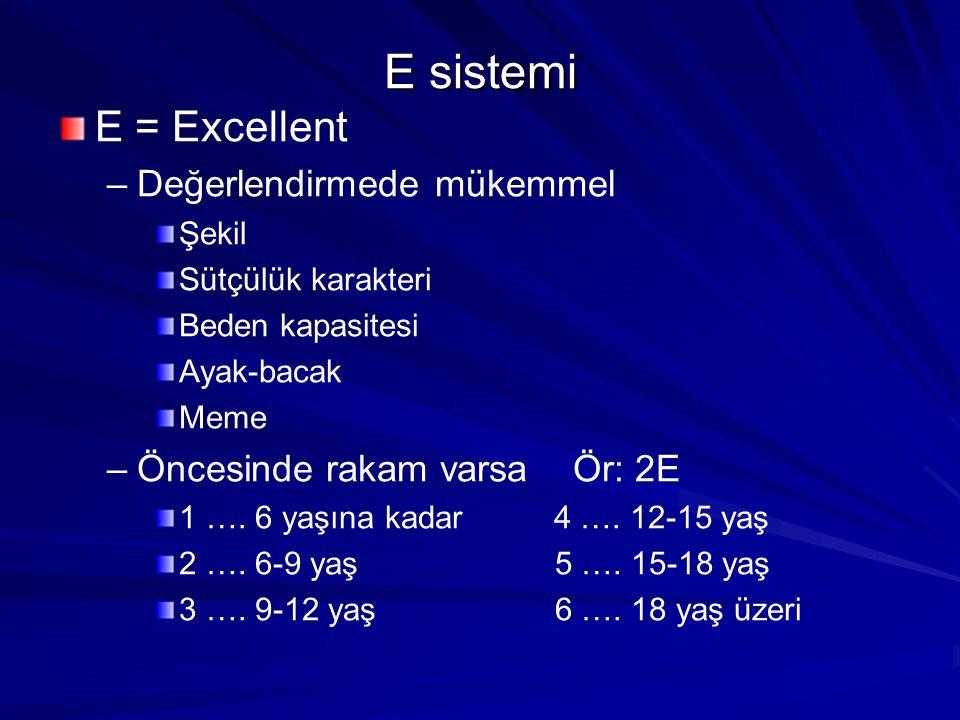 E sistemi E = Excellent Değerlendirmede mükemmel