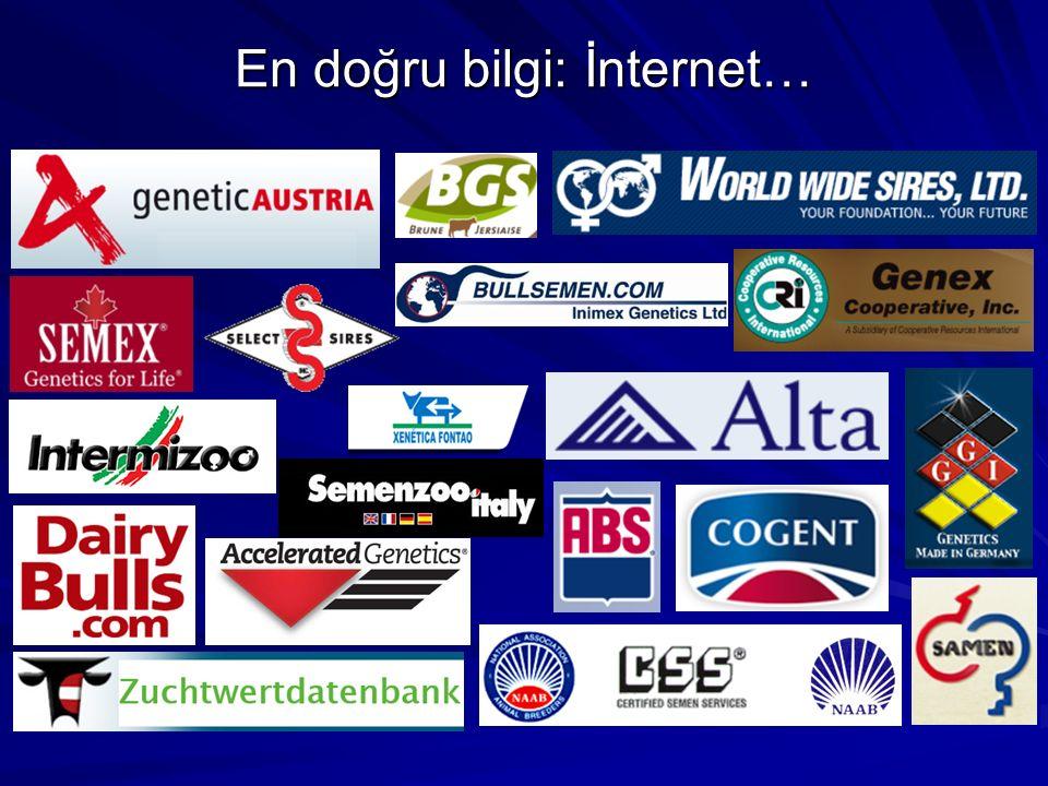 En doğru bilgi: İnternet…