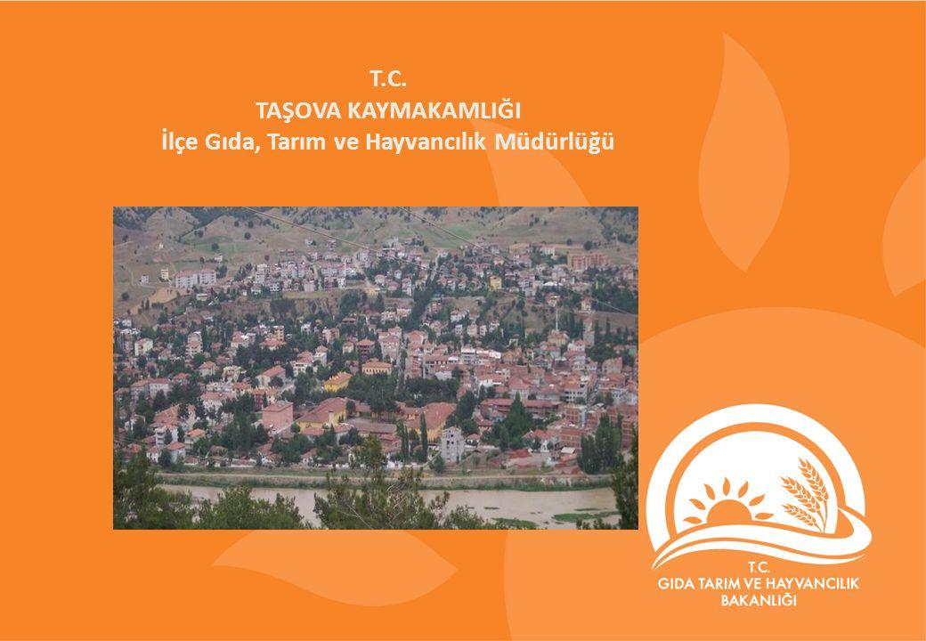 T.C. TAŞOVA KAYMAKAMLIĞI İlçe Gıda, Tarım ve Hayvancılık Müdürlüğü