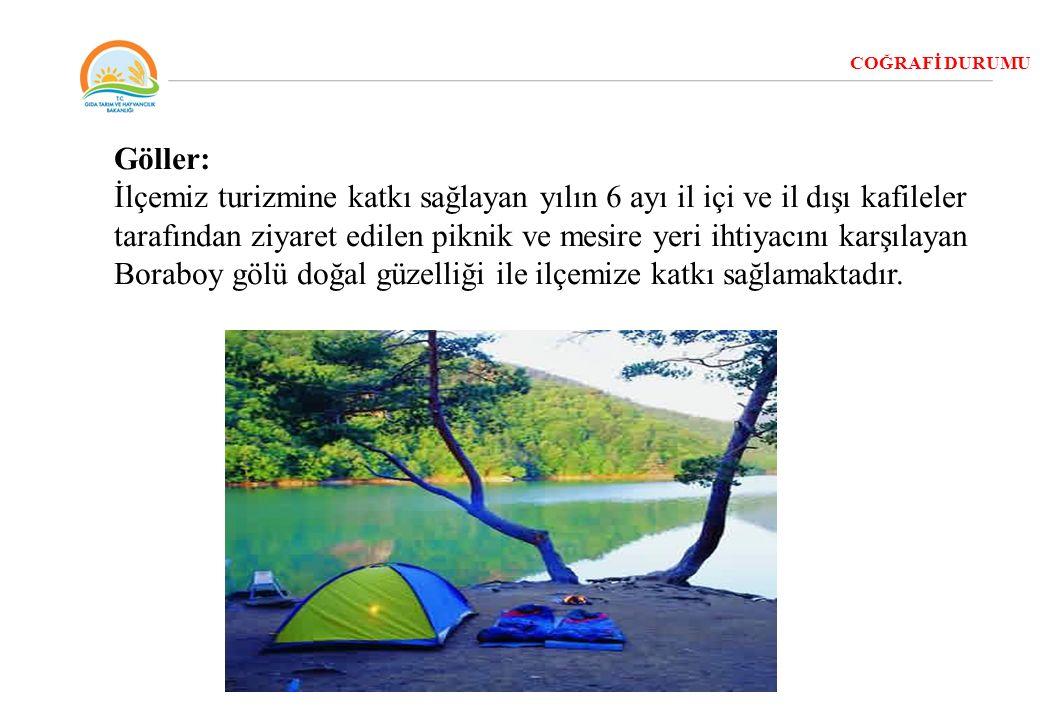 COĞRAFİ DURUMU Göller: