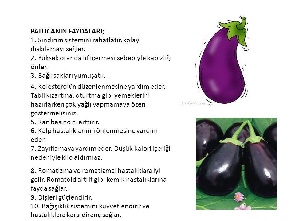PATLICANIN FAYDALARI;