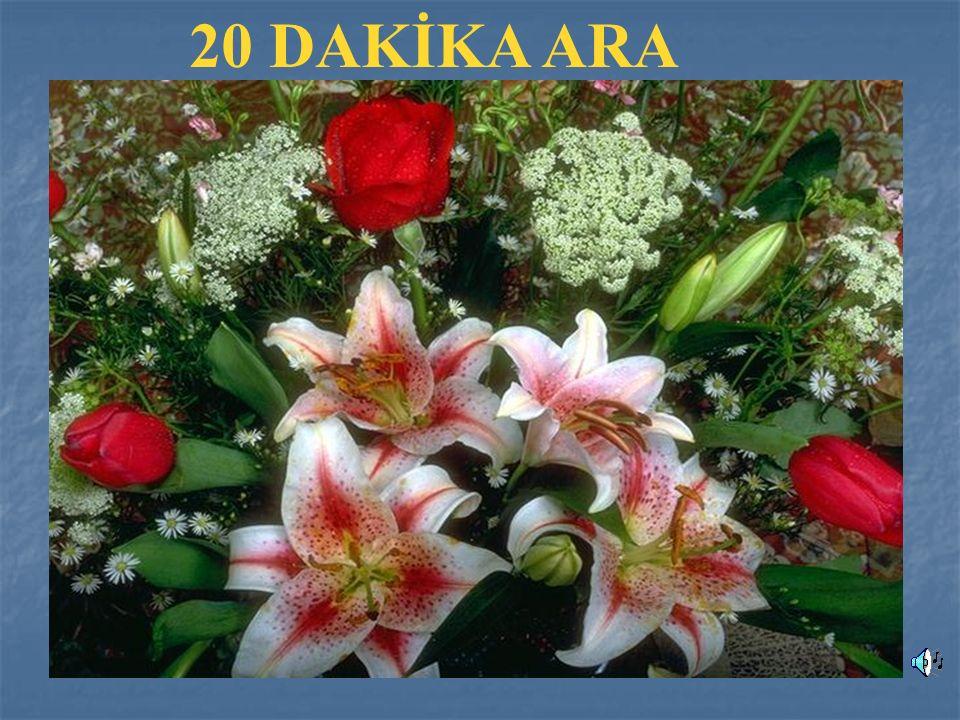 20 DAKİKA ARA