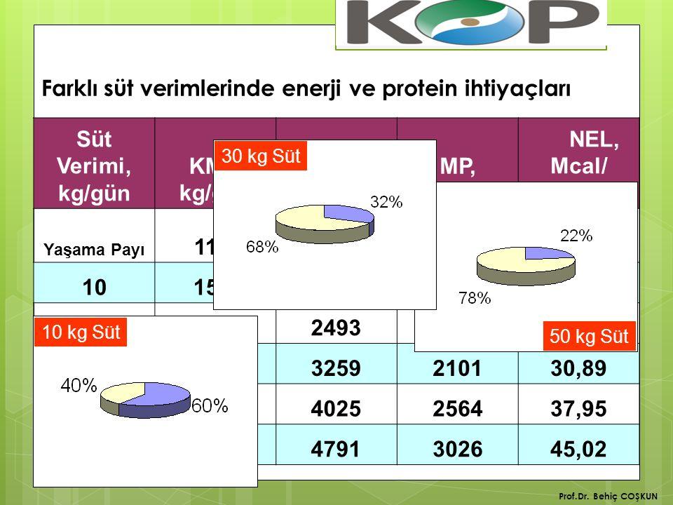 Farklı süt verimlerinde enerji ve protein ihtiyaçları