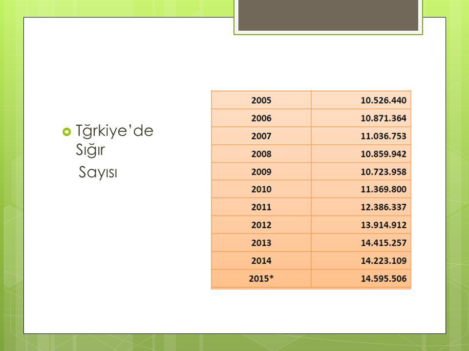 Tğrkiye'de Sığır Sayısı