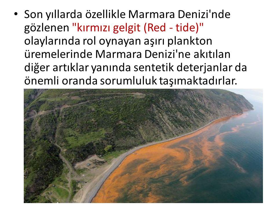 Son yıllarda özellikle Marmara Denizi nde gözlenen kırmızı gelgit (Red - tide) olaylarında rol oynayan aşırı plankton üremelerinde Marmara Denizi ne akıtılan diğer artıklar yanında sentetik deterjanlar da önemli oranda sorumluluk taşımaktadırlar.