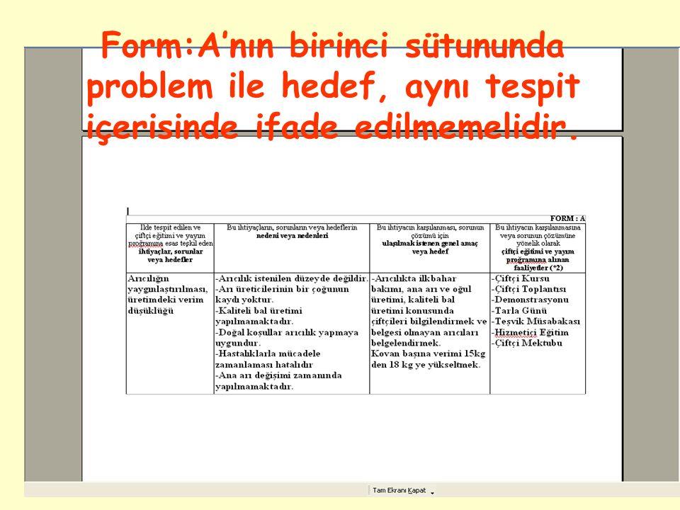 Form:A'nın birinci sütununda problem ile hedef, aynı tespit içerisinde ifade edilmemelidir.