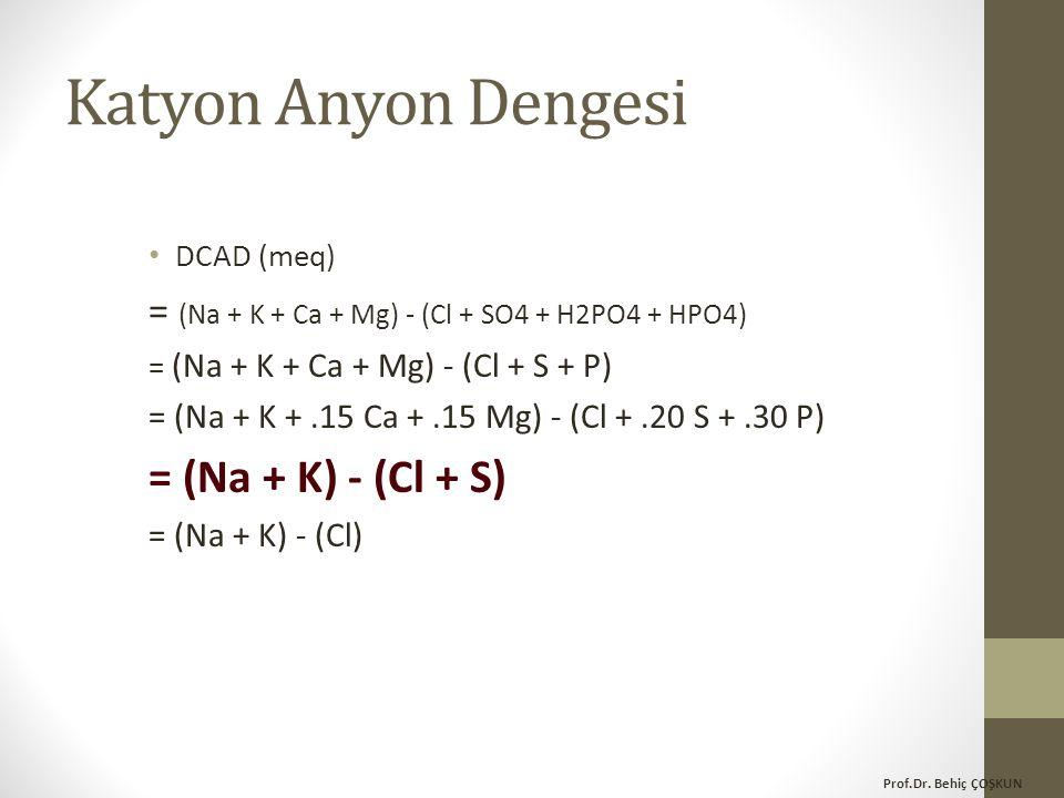 Katyon Anyon Dengesi = (Na + K) - (Cl + S)